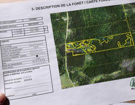 Confection de plan d'aménagement forestier (PAF)