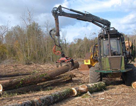 La récolte de bois et l'aménagement